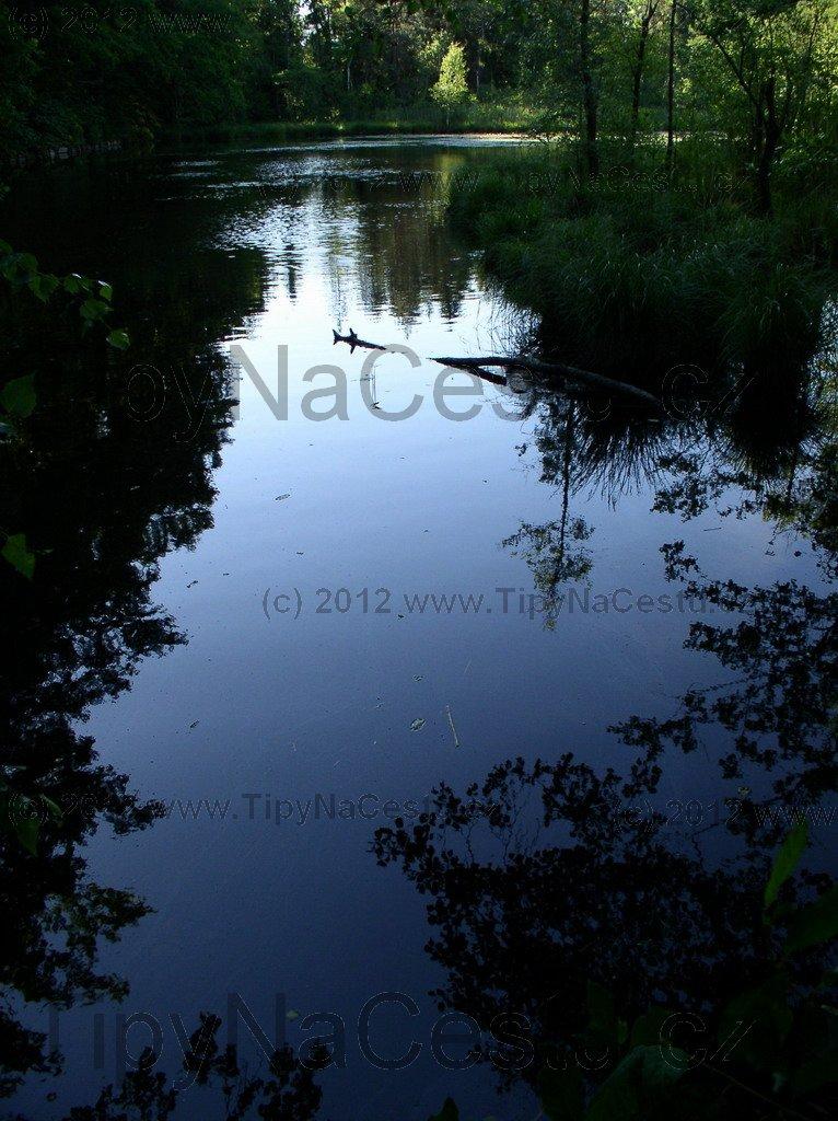 Houkvice rybník